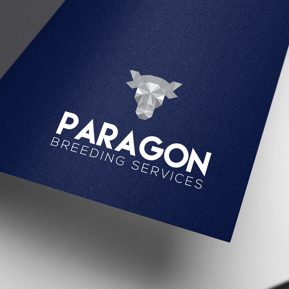 JFM Marketing + Design | Brand Identity/Logo Design Paragon