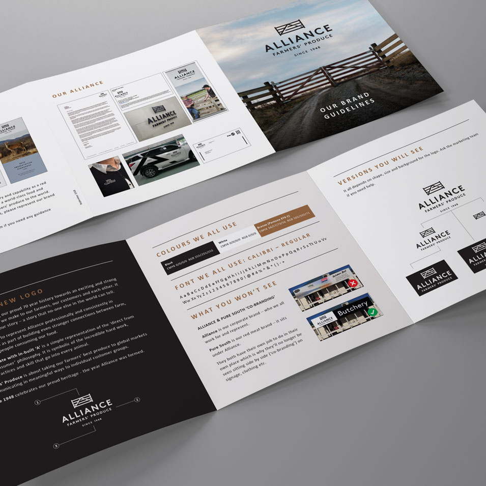 jfm-marketing-and-design-portfolio-project-flyers-brochures-alliance-brand-book